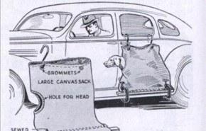 Saco para transportar a tu mascota en el coche