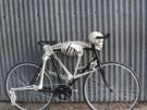 Bicicleta del terror 2010